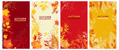 Obraz Vector set of abstract backgrounds - autumn sale - bright banners, posters, cover design templates, social media wallpaper stories with yellow and orange leaves - fototapety do salonu