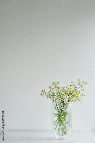Obraz na plátně Camomile bouquet standing on the transparent glass vase on the white wooden back