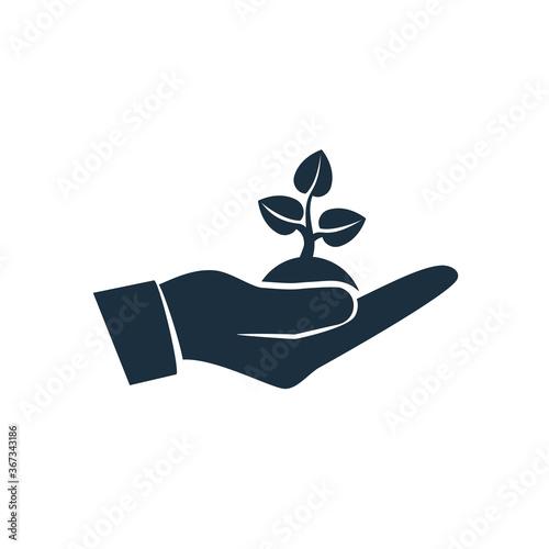 Fototapeta Planting sapling black icon. Male farmer, gardener holding green sprout in hand. Care and environmental development. Ecology concept.Vector illustration flat design. Isolated on white background. obraz