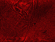 Red Moire, Watered Silk Patter...