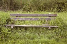Old Wooden Bench Overgrown With Grass