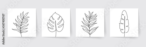 Obraz One line drawing of tropical palm leaves. Modern single line art. Vector illustration. - fototapety do salonu