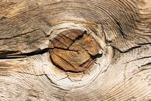 Wood Knot Background. Grunge W...