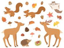 森の動物と秋のアイコ...