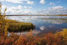 Autumn Landscape On The Tundra Lake. Beautiful Sunset Over The Lake. Autumn Season. Colorful Yellow Leaves. Cloudy Sky. Fall Season. Near Narian-Mar, Russia.