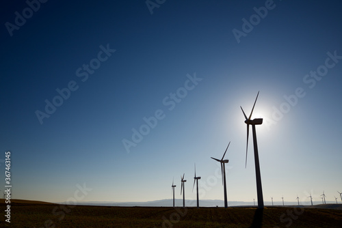 Fototapeta Sustainable wind energy obraz