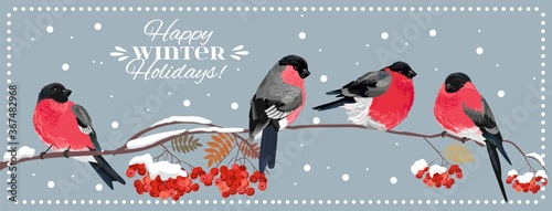 Happy winter holidays Fototapet