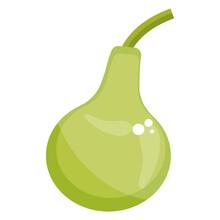 Round Gourd, Healthy Vegetable Icon Design