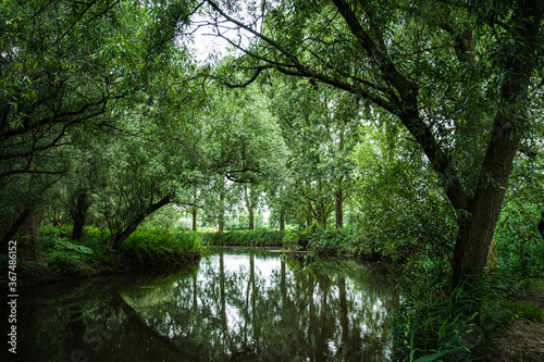 View of the river. Colorful landscape park with beautiful trees and water in provinces Noord Brabant, the Netherlands.