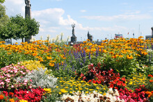 Many Bright Flowers On The Emb...