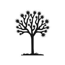 Joshua Tree Vector Isolated