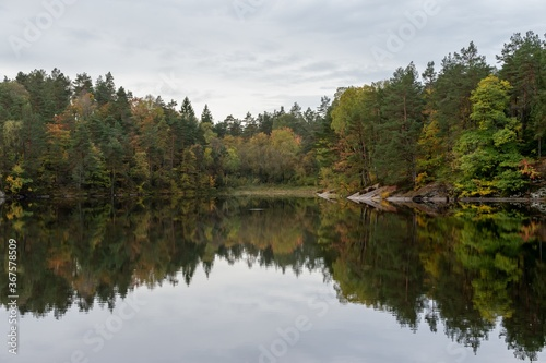 Obraz Beautiful shot of Autumn trees and their reflection in the lake - fototapety do salonu