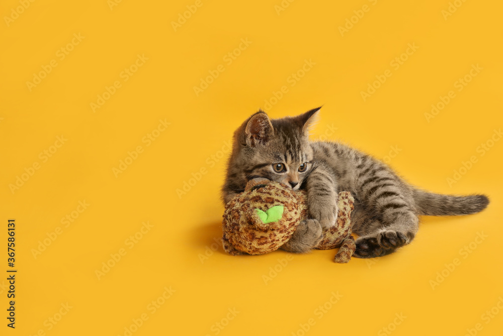 Cute tabby kitten with toy on yellow background, space for text. Baby animal