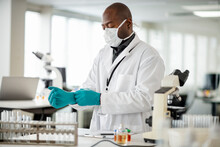 Medical Researcher Putting On Protective Gloves In Laboratory