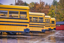 Parked School Buses In New Eng...