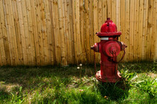 Red American Fire Hydrant