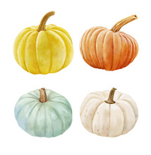 White And Orange Pumpkin, Leaves On Isolated White Background, Autumn Set Of Elements On Isolated White Background, Watercolor Illustration, Hand Drawing