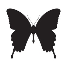 Butter Fly Silhouette
