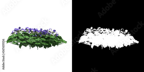 Left view of floral plant (Geranium Rozanne) png with alpha channel to cutout 3D Wallpaper Mural
