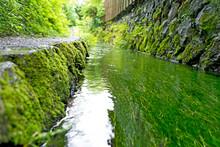 田舎の小川