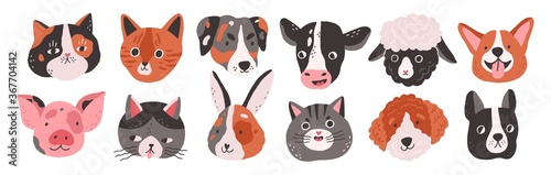 Obraz Set of happy funny domestic animals or farm pet. Different faces, muzzles, heads or avatars. Cats, dogs, sheep, cow, pig, rabbit or hare. Flat vector cartoon illustration isolated on white background - fototapety do salonu