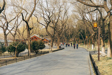 Walking Trough The Beihai Park In Beijing