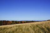 Górska panorama