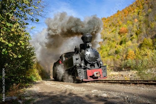 Fotografie, Obraz Autumn steam train from Romania - Mocanita Maramures
