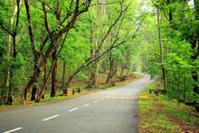 The Long Winding Road To Sholayar