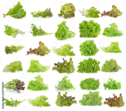 Foto Fresh  lettuce leaves isolated on white background.