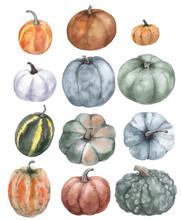 Set Of Watercolor Pumpkins On ...