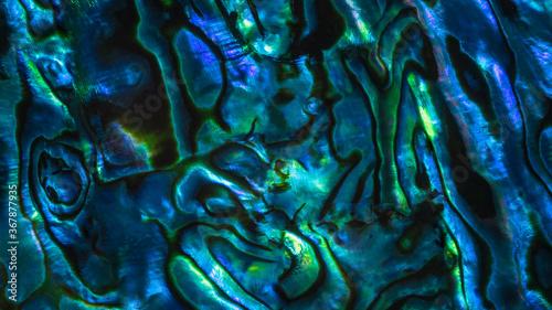 Photo Brightly coloured New Zealand Paua shell patterns