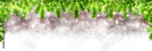 Fotografía クリスマス モミの木 冬 背景