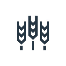 Grain Icon Vector From Nature ...