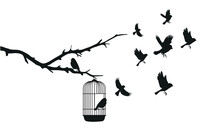 Birds Emerge From A Cage That ...