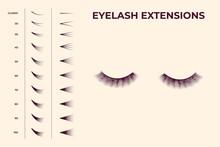 Eyelash Volume Boost Set. Fake...