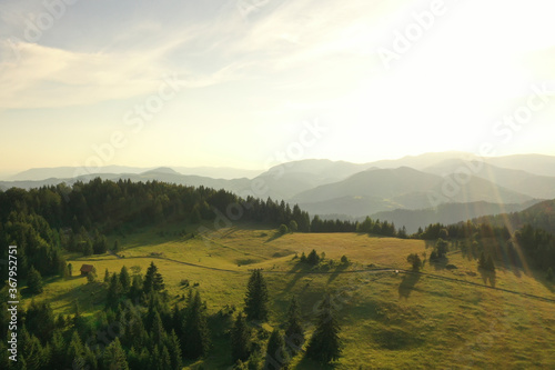 Obraz Aerial view at mountain forest on a summer day - fototapety do salonu