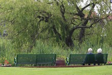 Two Senior People Enjoying Each Others Company On A Summers Day Sat On A Park Bench While Looking At The Local Pond With Trees And Flowers Set Around It