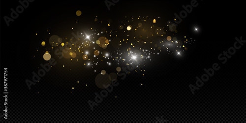Obraz  Vector sparkles on a transparent background. Christmas light effect. Sparkling magical dust particles.The dust sparks and golden stars shine with special light. - fototapety do salonu