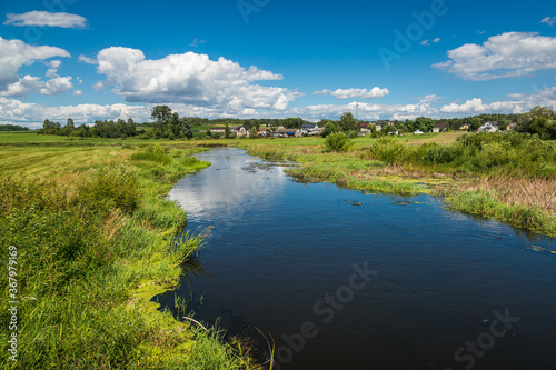 Fototapeta View on the Liwiec river at sunny day  near Mokobody, Masovia, Poland obraz