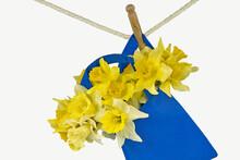 Yellow Daffodil Bouquet In Blu...