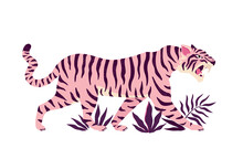 Tiger And Tropical Leaves. Trendy Vector Illustration.