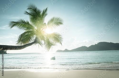 Obraz sunset on the beach, Mahe island, Seychelles - fototapety do salonu