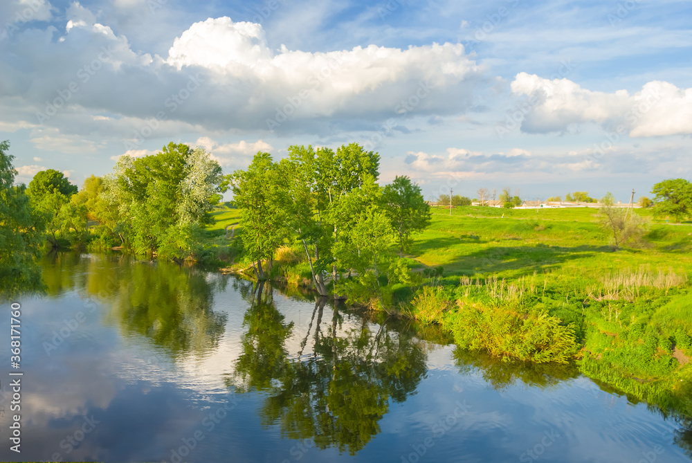 Fototapeta quiet summer river with forest on a coast, summer countryside landscape - obraz na płótnie