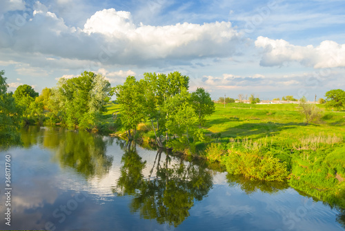Fototapeta quiet summer river with forest on a coast, summer countryside landscape obraz na płótnie