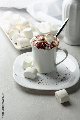 Obraz Hot chocolate with marshmallows sprinkled with chocolate crumbs. - fototapety do salonu