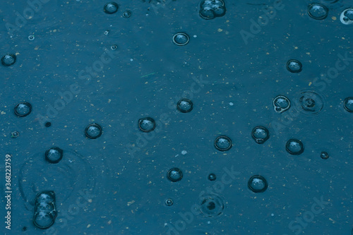 Fotografía blue background puddle of rain / raindrops, circles on a puddle, bubbles in the