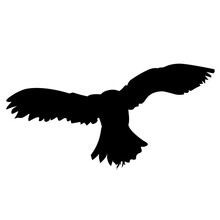 Flying Owl. Black Silhouette O...