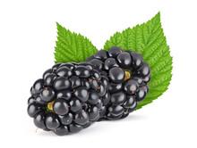 Blackberries With Green Leaves...