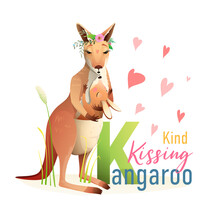 K Is For Kangaroo, Animal ABC ...